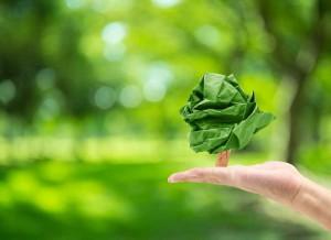 Soler Prevención, firme compromiso con el medio ambiente